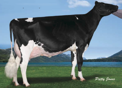 Ms Chassity Goldwyn Cash-ET