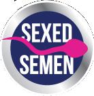 sexed-semen